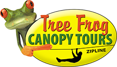 Tree Frog Canopy Tours  sc 1 th 139 & Thrilling Ziplining in Ohio | Tree Frog Canopy Tours