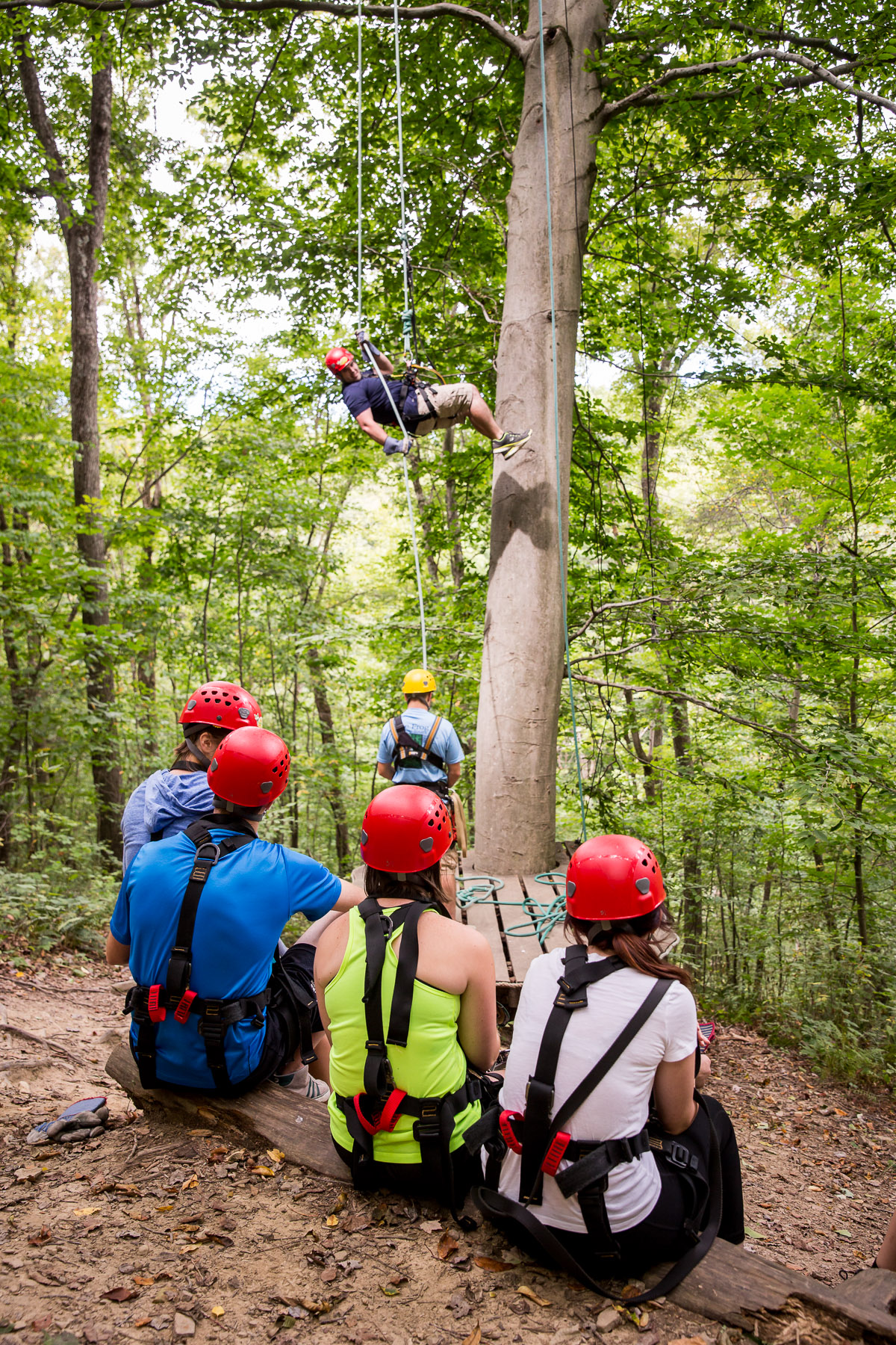 Tree Frog Canopy Zip Line Tours & New to Ziplining? - Tree Frog Canopy Tours