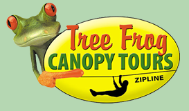 SAVE 20% on ALL 2016 Tours NOW-APRIL 8th!